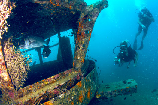 Deep, wreck and notrix specialty courses